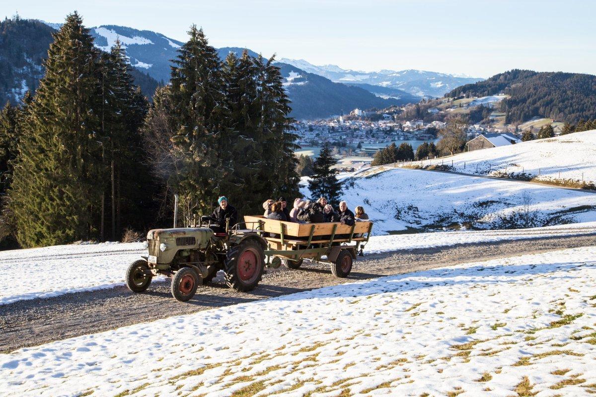 Fahrt mit dem Traktor zum Schwalbennest