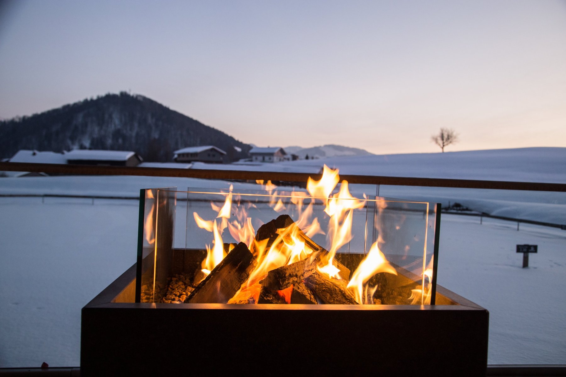 20190125-Feuer am See-52841 25. Januar 2019