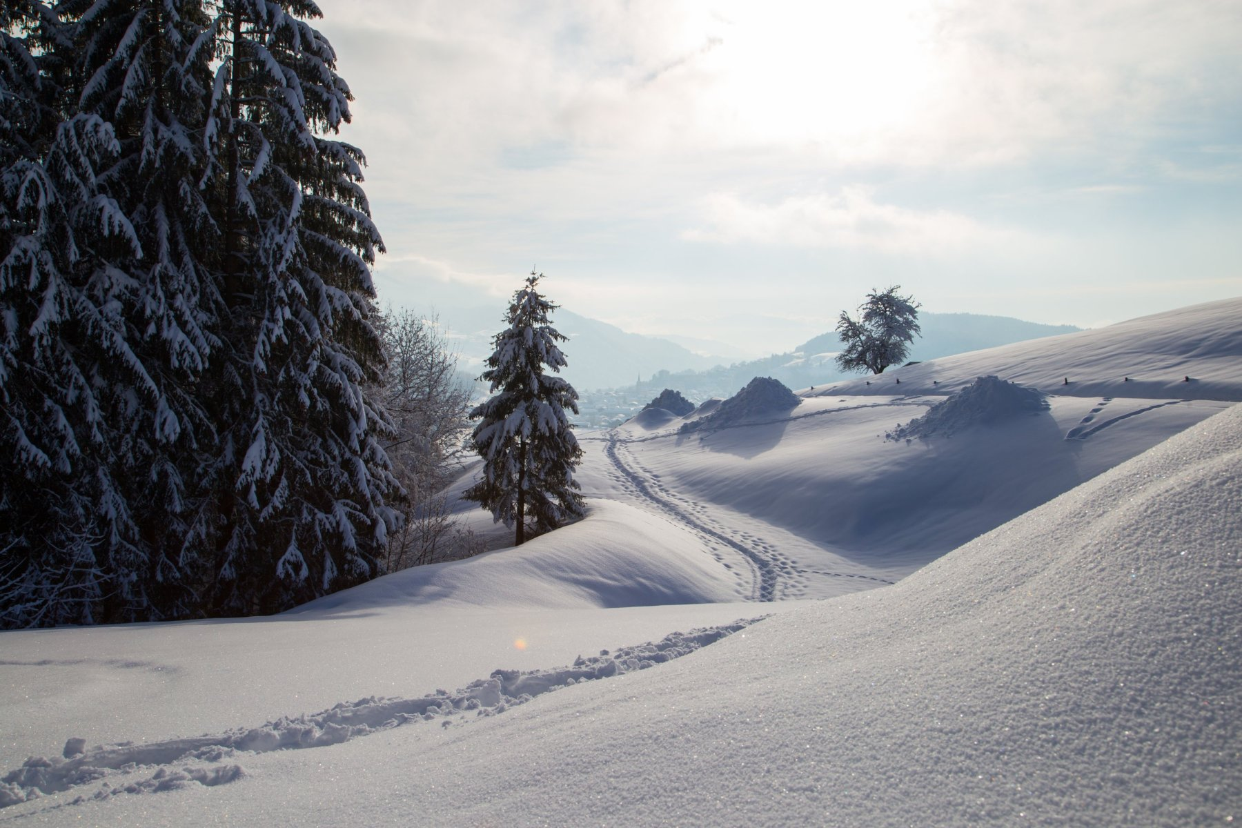Winter am Klimapfad