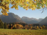 Herbst Moorweiher
