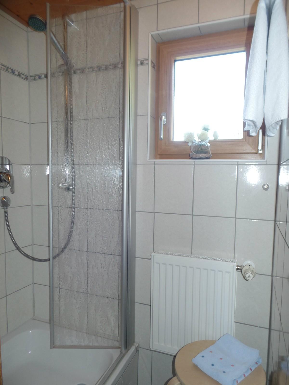 Ferienwohnung Ifenblick F✷✷✷ Dusche