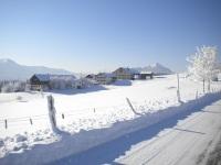 Winter in Gereute
