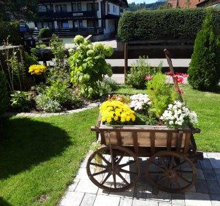 unser Garten