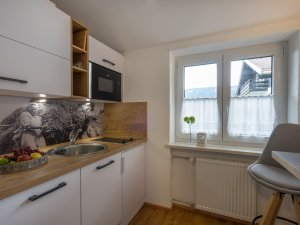 Wohnung Platzhirsch-Küche