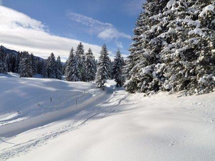 Herrliche Winterwanderwege