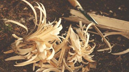 Naturwerkstatt zum Basteln mit Naturmaterialien