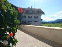 Ferienwohnung Rankwirt: Terrasse aufhübschen