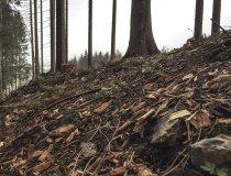 Osternest Naturwerkstatt Basteln