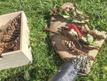 Naturwerkstatt Herbstliche Tischdeko (7) 1