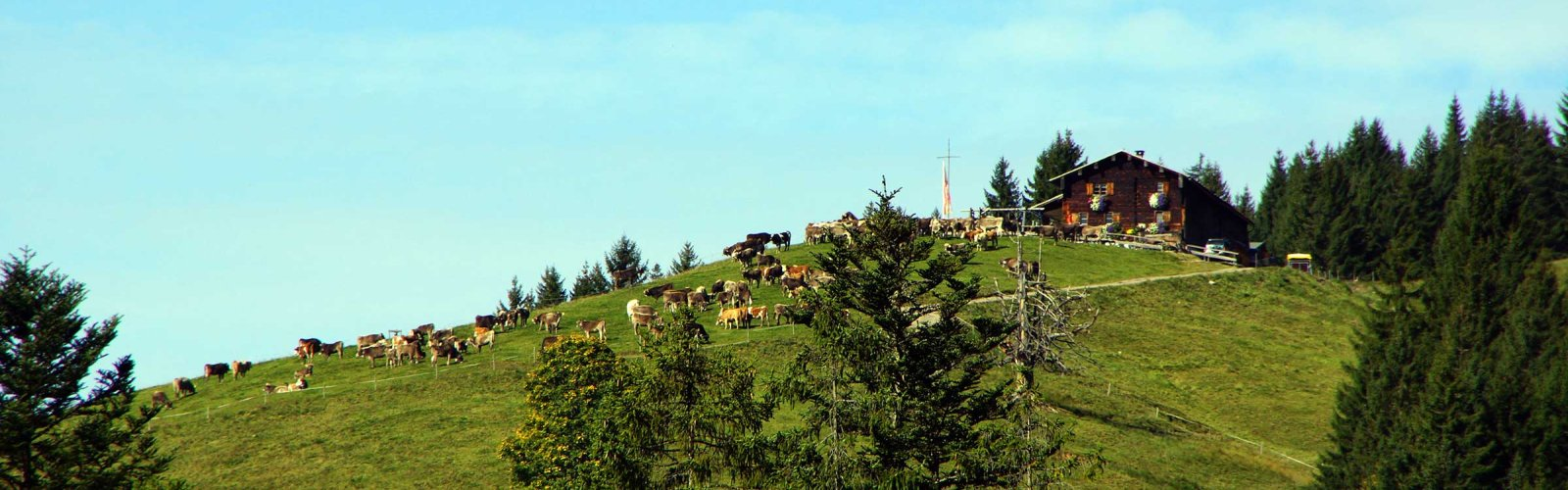 Hiesinger, Alpe Osterberg