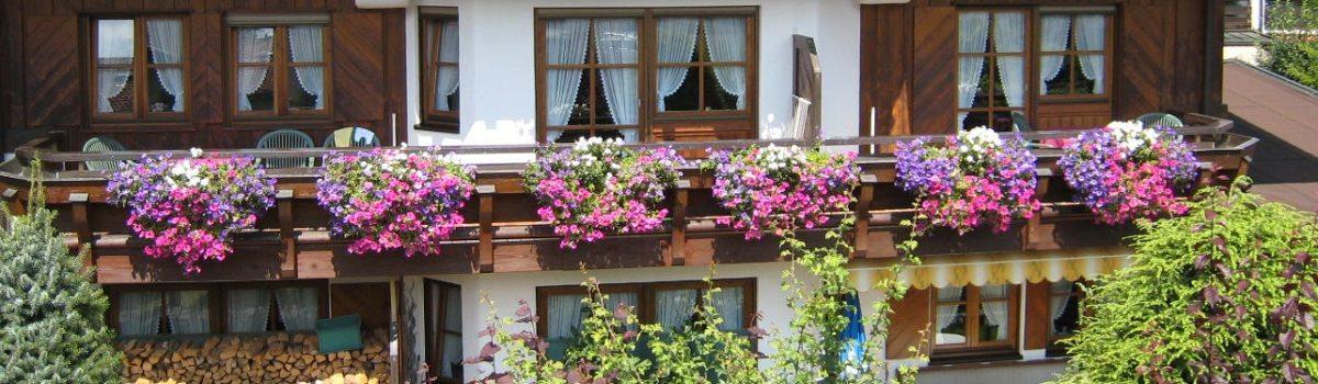 Balkon + garten