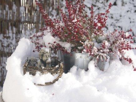 Engel im Winter