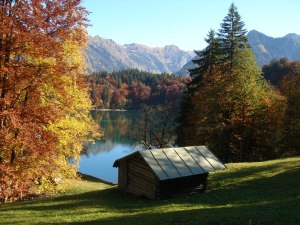 Herbst am Freibergsee