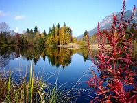 Herbstimmung