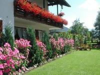 Unser Haus Sieglinde mit Sommerblumen