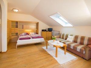 1-Raum Wohnung Nr.5