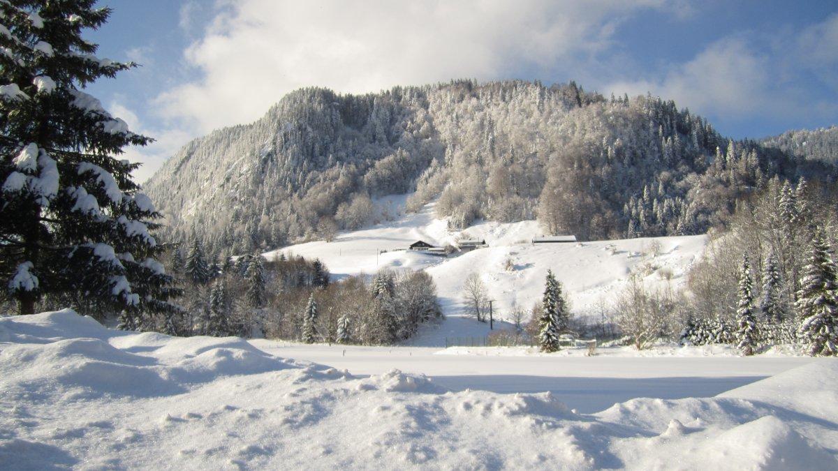 Geißberg in Tiefenbach