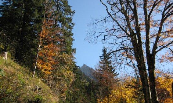 Herbstbilder 009