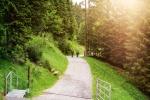 Auf dem Höhenweg nach Mittelberg