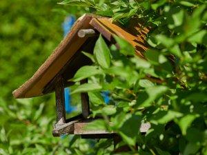 Vogelhäußchen im Hotelpark