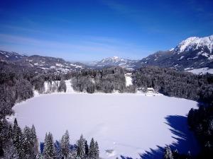 Blick auf den gefrorenen Freibergsee
