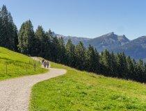 Panoramaweg vom Söllereck nach Riezlern