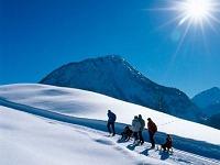 Winterbild-Spaziergang
