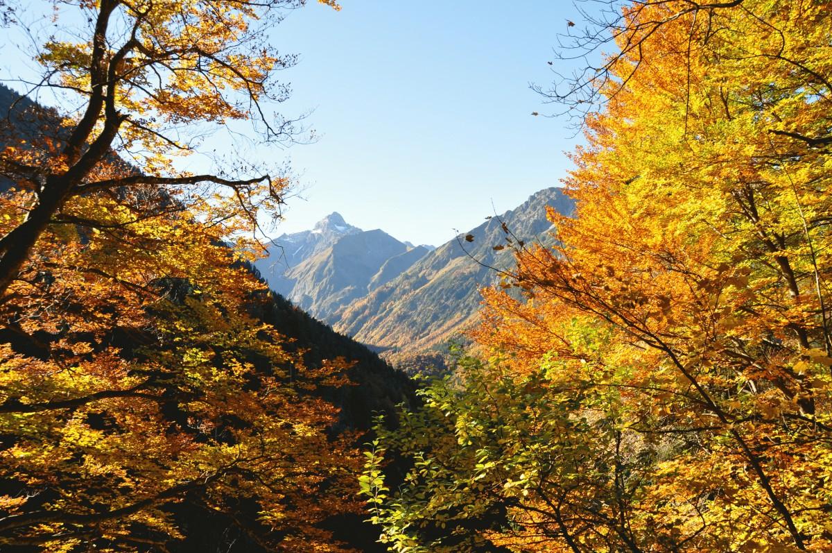 Trettachspitze Herbst