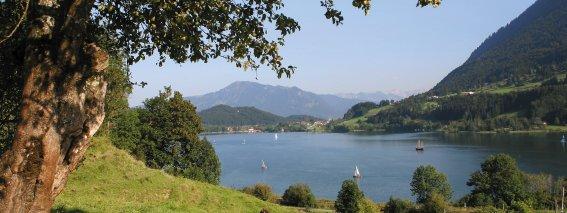 Traumhafter Blick auf Alpsee und Grünten
