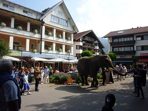 Elefantendame Benjamin vor dem Hotel Mohren