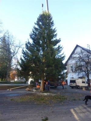 Der Oberstdorfer Christbaum