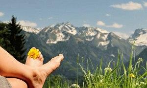 Die goldgelbe Blumenwiesen laden zum Verweilen ein!