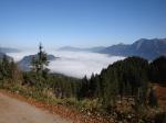 Oberstdorf/Nebel