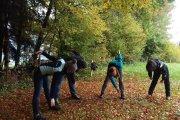 Aktiv Programm im Herbst
