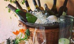 Weinlaubenfest