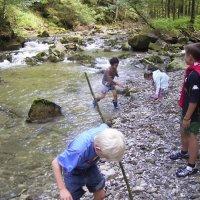 Hotel Pfeiffermühle: Abenteuer-Bachwanderung