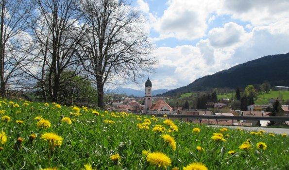 Sommer ist so wunderschön hier in Nesselwang!
