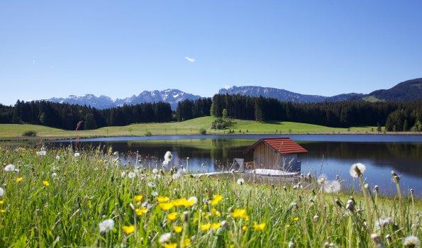 Attlesee im Sommer - Entspannen und den Ausblick genießen!