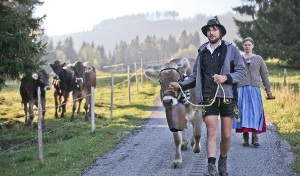 Viehscheid - ein Event, das keiner missen will!
