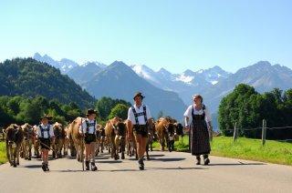 Viehscheid-schoellang-tourismus-oberstdorf-1