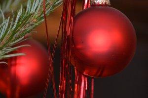 Weihnachtliche Stimmung im Tannhof