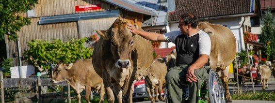 Mit der Kuh auf du und du