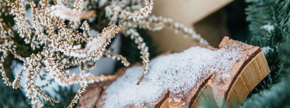 Winterliche Deko mit Schnee