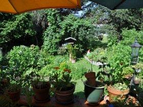 Blick zum Küchen- und Wildkräutergarten
