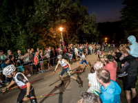 FIS Sommer-Grand-Prix