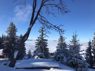 Winterbild Iseler