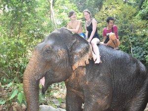 Thailand Reise Behinderte