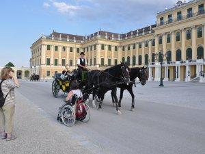 Wien mit Rollstuhl