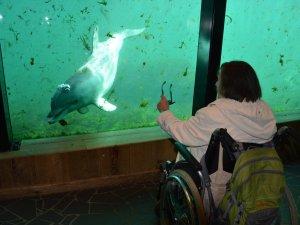 Rollstuhlurlaub mit Betreuung