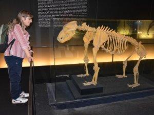 Museumsbesuch für Menschen mit Behinderung